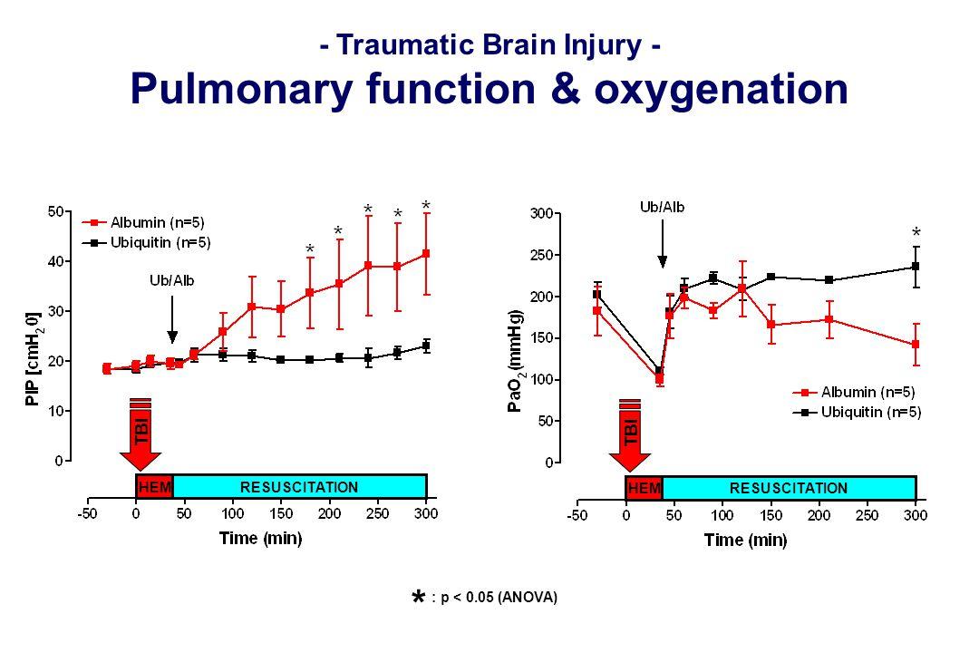 - Traumatic Brain Injury - Pulmonary function & oxygenation HEM RESUSCITATION TBI HEM RESUSCITATION TBI : p < 0.05 (ANOVA) *