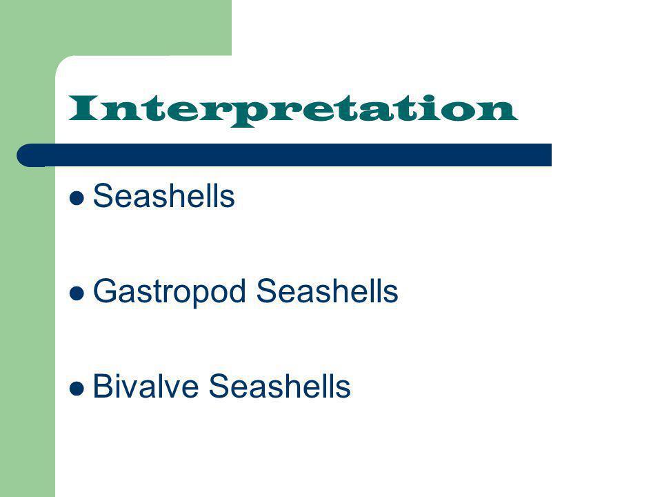 Interpretation Seashells Gastropod Seashells Bivalve Seashells