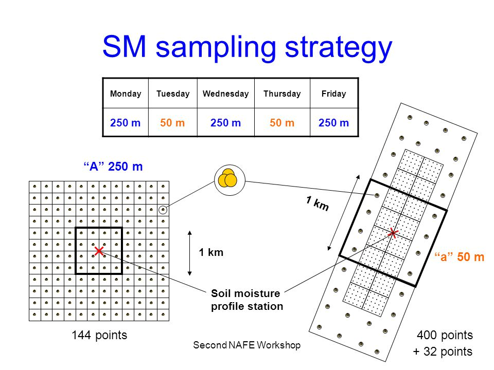 Second NAFE Workshop SM sampling strategy MondayTuesdayWednesdayThursdayFriday 250 m50 m250 m50 m250 m Soil moisture profile station 1 km 144 points40