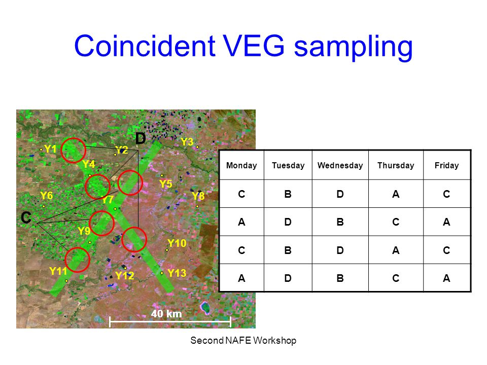 Second NAFE Workshop VEG sampling strategy MondayTuesdayWednesdayThursdayFriday 16 samples/site 16 samples = N1(land cover1) + N2(land cover2) +… 1 km Minimum of 5 per landcover