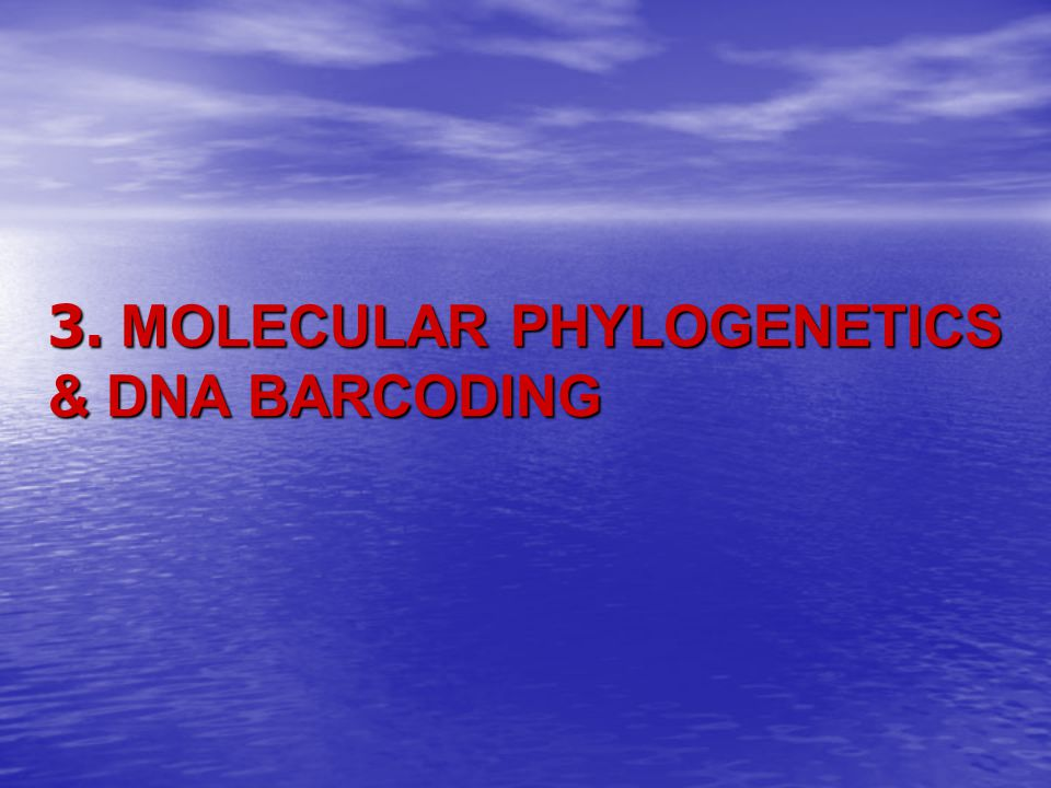 3. MOLECULAR PHYLOGENETICS & DNA BARCODING