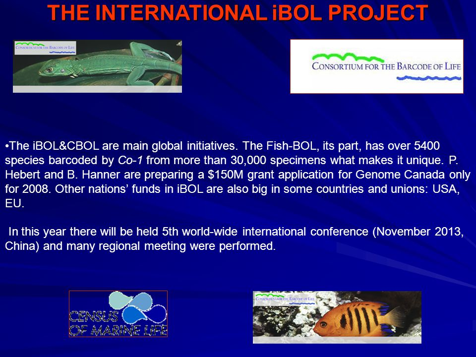 THE INTERNATIONAL iBOL PROJECT The iBOL&CBOL are main global initiatives.