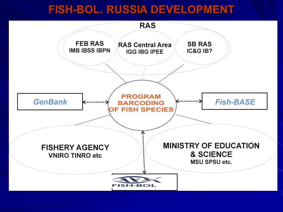 FISH-BOL. RUSSIA DEVELOPMENT