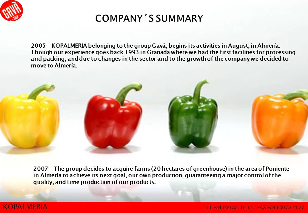 2 COMPANY´S SUMMARY 2005 - KOPALMERIA belonging to the group Gavá, begins its activities in August, in Almería.