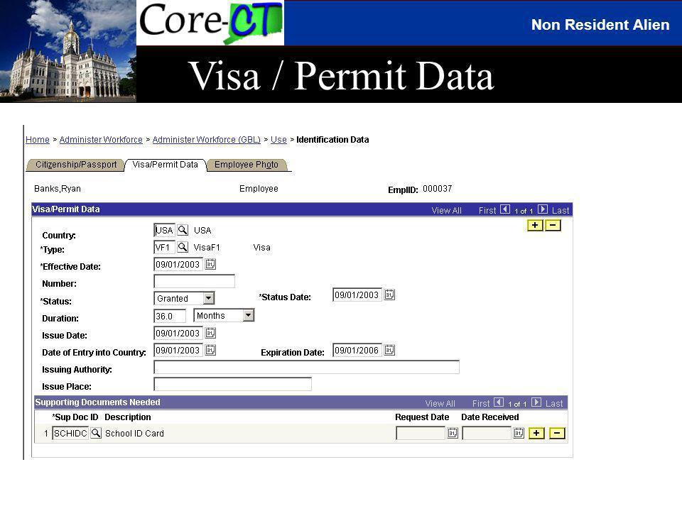 Non Resident Alien Visa / Permit Data