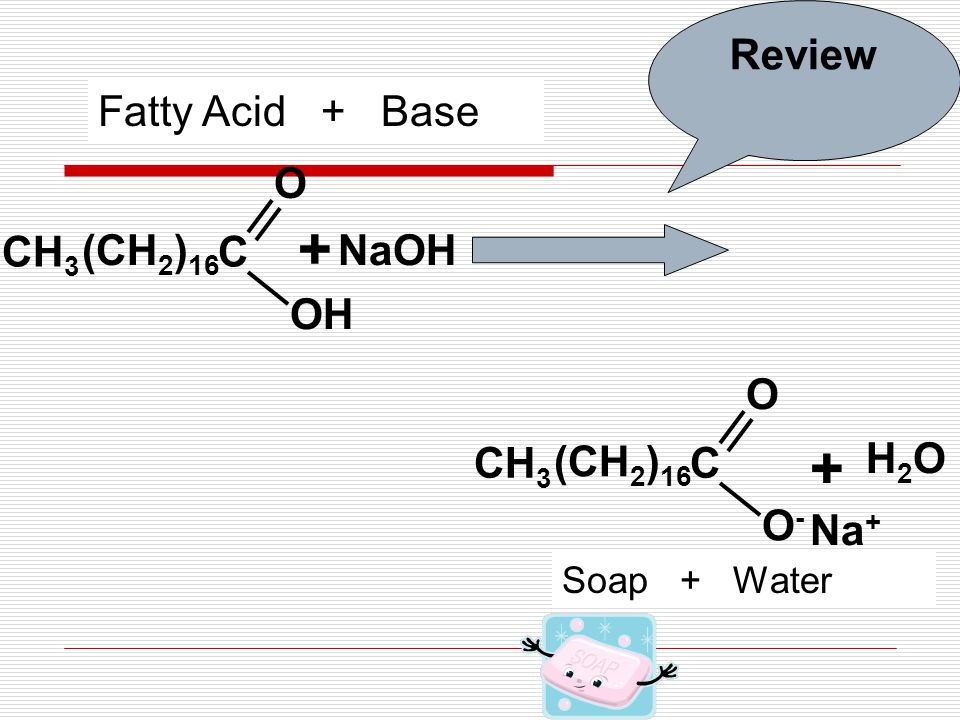 C OH O CH 3 + NaOH H2OH2O + Na + (CH 2 ) 16 C O-O- O CH 3 (CH 2 ) 16 Fatty Acid + Base Soap + Water Review
