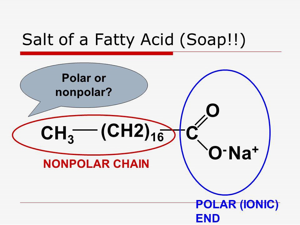 Salt of a Fatty Acid (Soap!!) CH 3 (CH2) 16 C O O-O- Na + Polar or nonpolar? NONPOLAR CHAIN POLAR (IONIC) END
