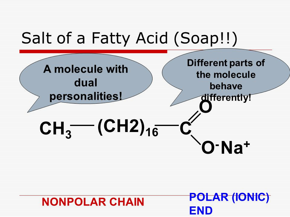 Salt of a Fatty Acid (Soap!!) CH 3 (CH2) 16 C O O-O- Na + A molecule with dual personalities.