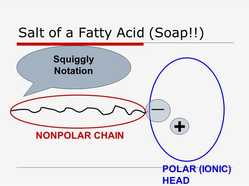 Salt of a Fatty Acid (Soap!!) Squiggly Notation NONPOLAR CHAIN POLAR (IONIC) HEAD +