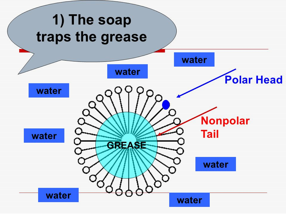 1) The soap traps the grease GREASE Polar Head Nonpolar Tail water