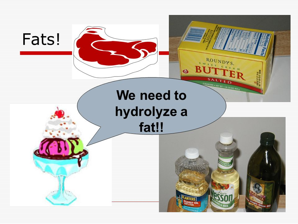 Fats! We need to hydrolyze a fat!!