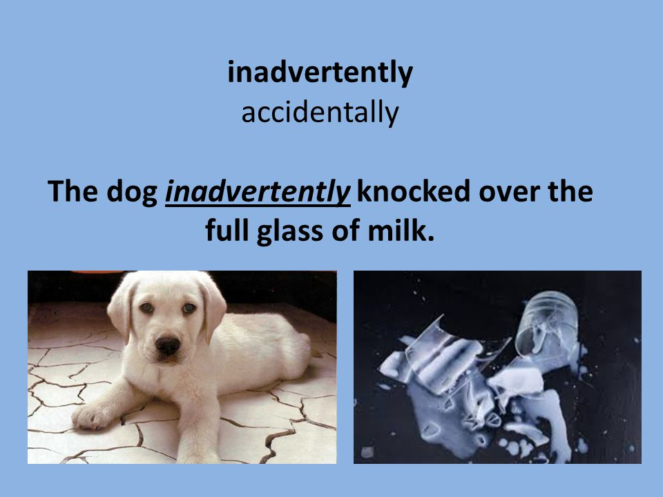 inadvertently accidentally The dog inadvertently knocked over the full glass of milk.