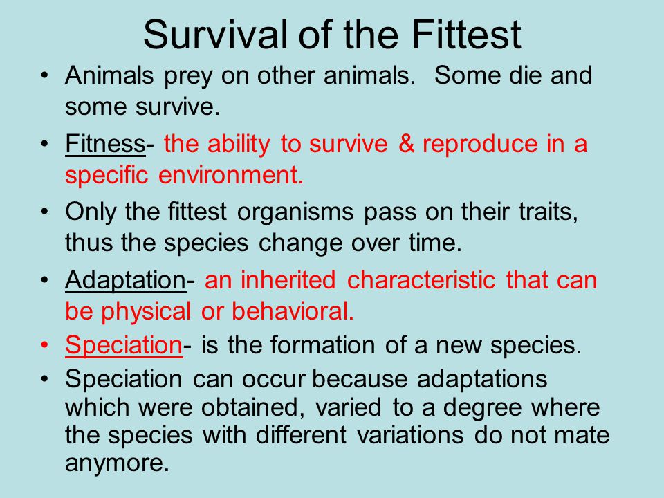 Survival of the Fittest Animals prey on other animals. Some die and some survive. Fitness- the ability to survive & reproduce in a specific environmen
