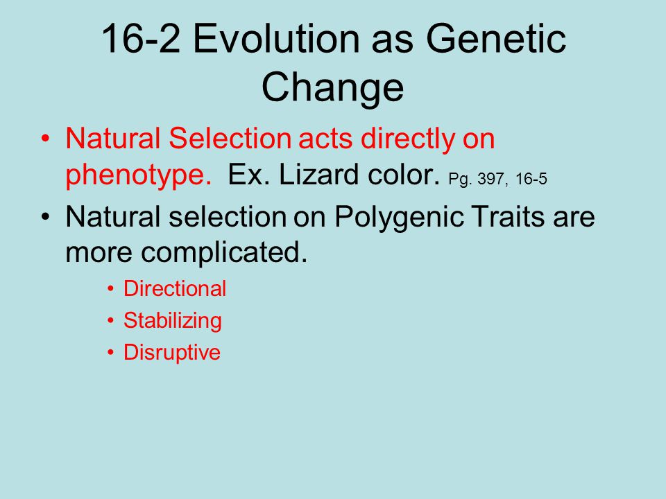 16-2 Evolution as Genetic Change Natural Selection acts directly on phenotype. Ex. Lizard color. Pg. 397, 16-5 Natural selection on Polygenic Traits a