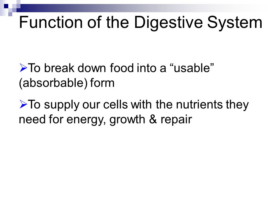 "Function of the Digestive System  To break down food into a ""usable"" (absorbable) form  To supply our cells with the nutrients they need for energy,"