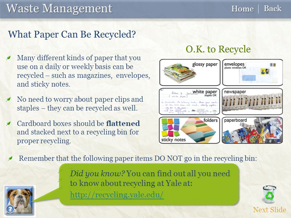 Waste Management Waste Management What Paper Can Be Recycled.