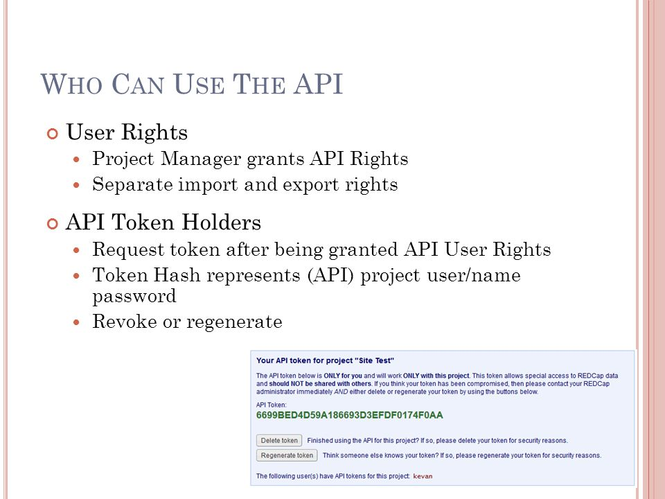W HO C AN U SE T HE API User Rights Project Manager grants API Rights Separate import and export rights API Token Holders Request token after being gr