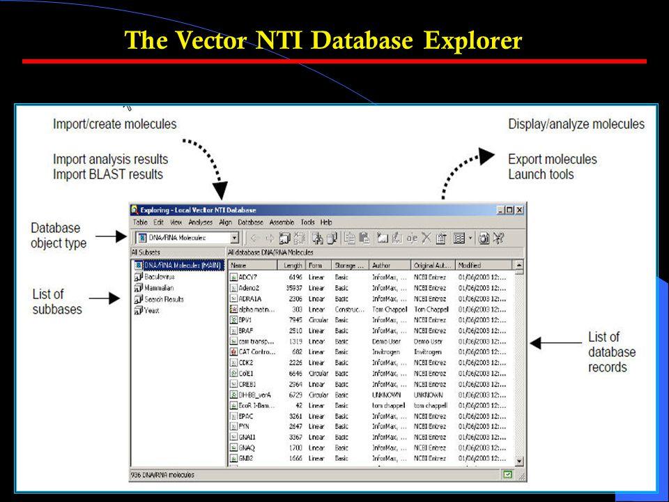 The Vector NTI Database Explorer