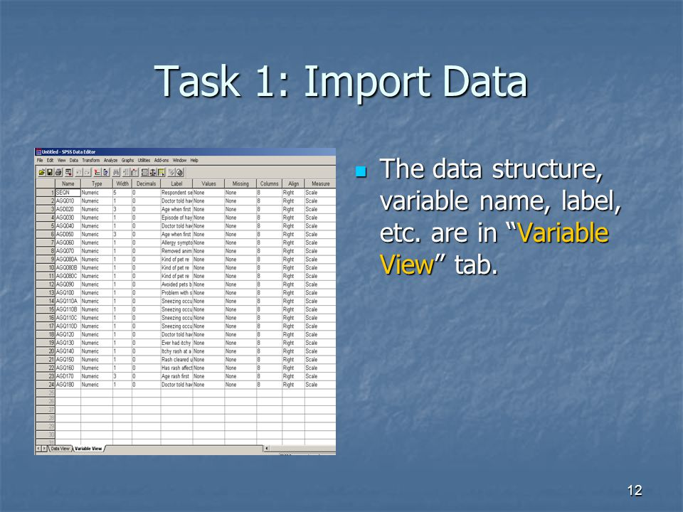 """12 Task 1: Import Data The data structure, variable name, label, etc. are in """"Variable View"""" tab. The data structure, variable name, label, etc. are i"""