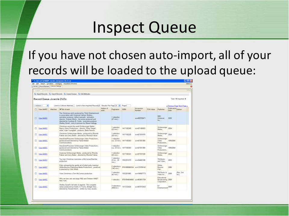 Inspect Queue If you have not chosen auto-import, all of your records will be loaded to the upload queue: