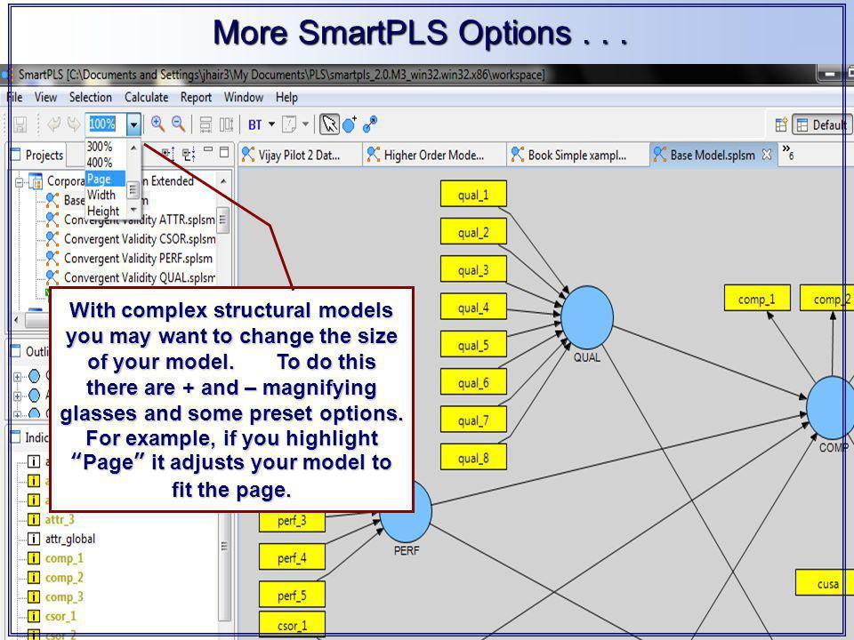 More SmartPLS Options...