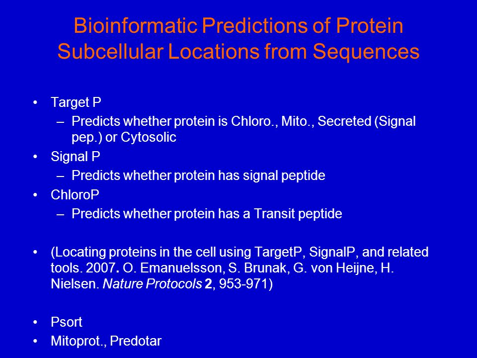 Bioinformatic Predictions of Protein Subcellular Locations from Sequences Target P –Predicts whether protein is Chloro., Mito., Secreted (Signal pep.)