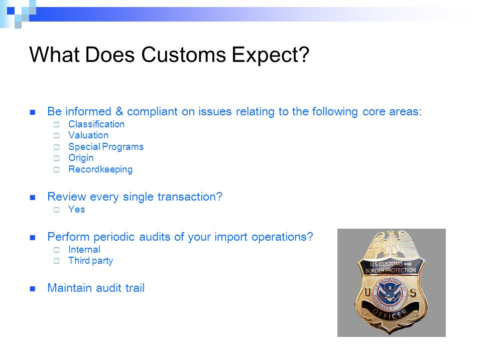 What Does Customs Expect.
