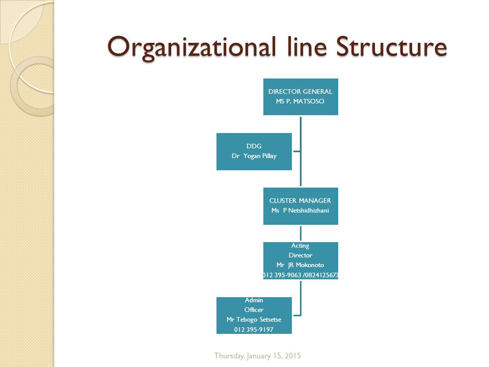 Organizational line Structure DIRECTOR GENERAL MS P.