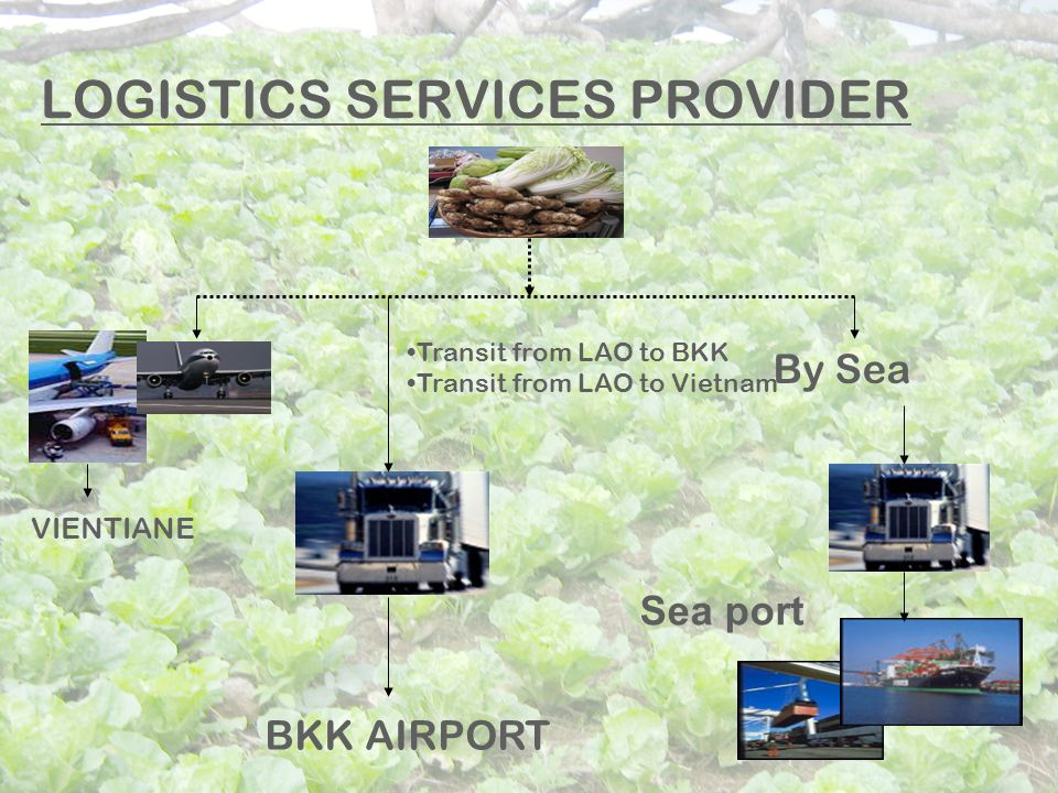 LOGISTICS SERVICES PROVIDER VIENTIANE BKK AIRPORT Transit from LAO to BKK Transit from LAO to Vietnam By Sea Sea port
