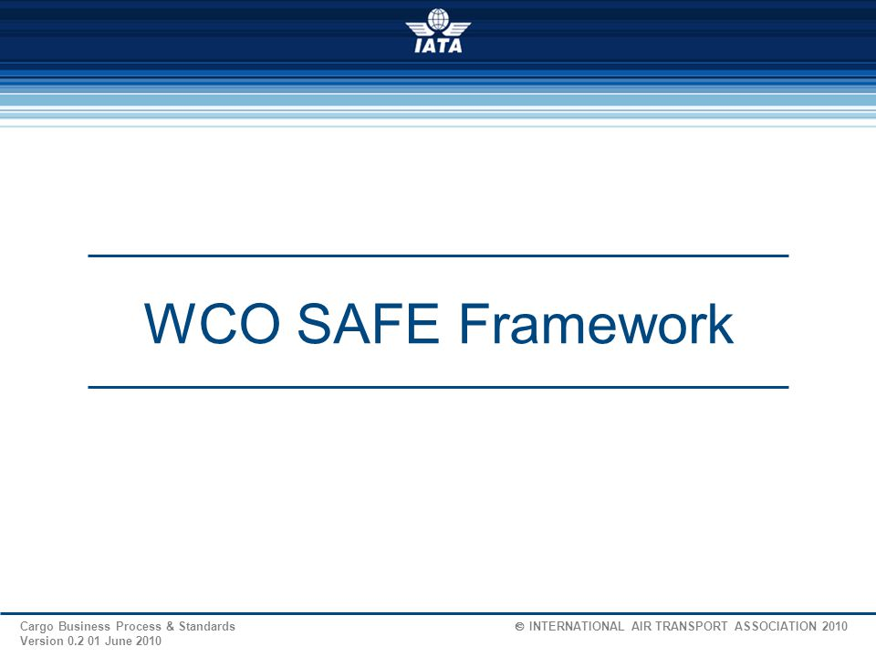 18 Cargo Business Process & Standards  INTERNATIONAL AIR TRANSPORT ASSOCIATION 2009 Version 1.2 04 Feb.