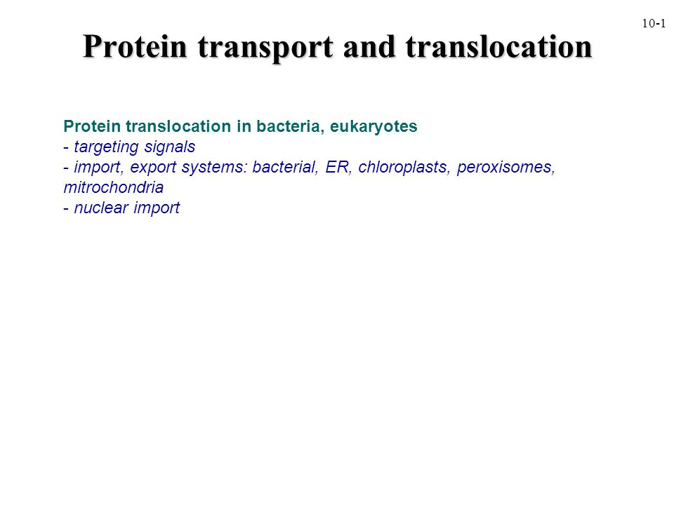  at least 40% of all cellular proteins are:  inserted into a membrane  translocated into an organelle, nucleus  exported outside the cell or to the periplasm  proteins must be kept in translocation- competent form (i.e., either partially or entirely unfolded  exception is peroxisomes, nucleus  proteins must be folded/assembled after translocation; molecular chaperones are usually involved  translocation is an energy dependent process 10-2 Overview of protein transport and translocation