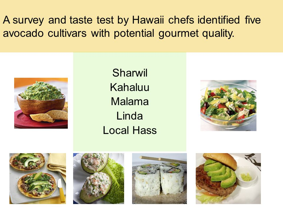 Sharwil Kahaluu Malama Linda Local Hass A survey and taste test by Hawaii chefs identified five avocado cultivars with potential gourmet quality.