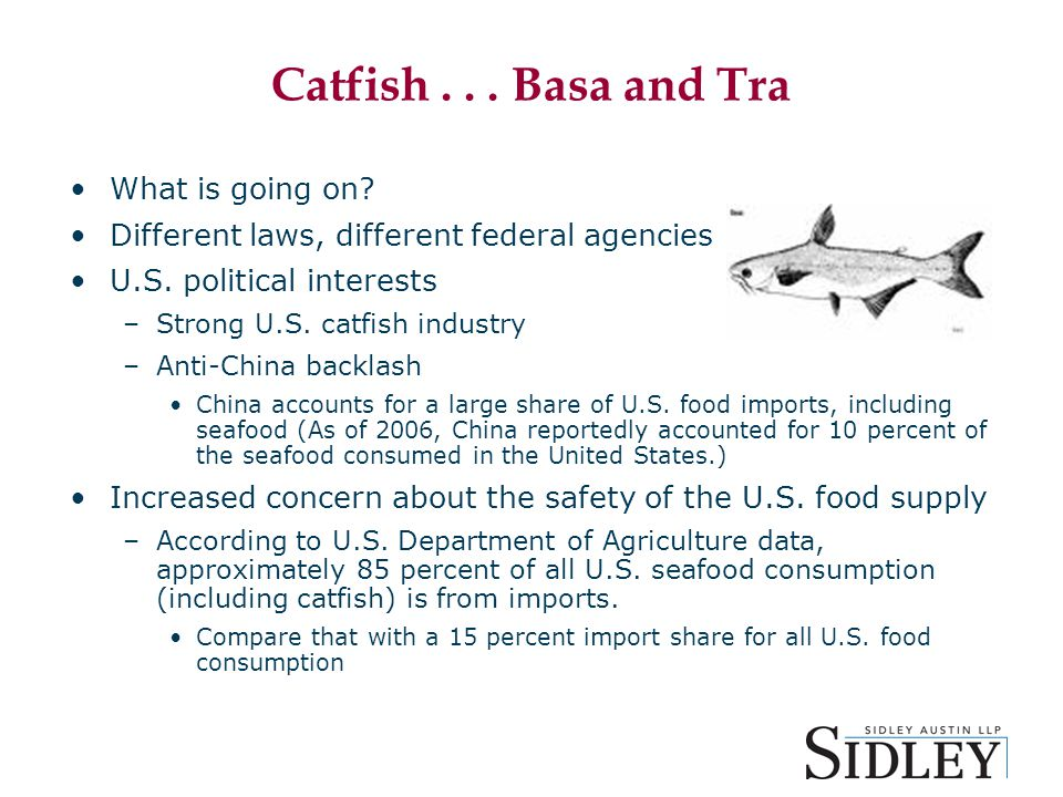 Catfish... Basa and Tra What is going on. Different laws, different federal agencies U.S.
