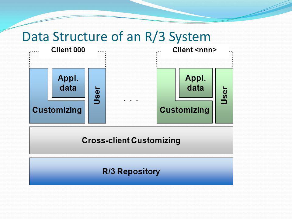 R/3 Repository Cross-client Customizing... User Appl.
