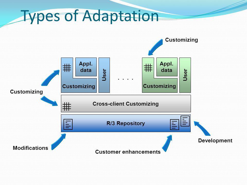 Customizing Development Customer enhancements Modifications Customizing R/3 Repository Cross-client Customizing.. User Appl. data Customizing User App