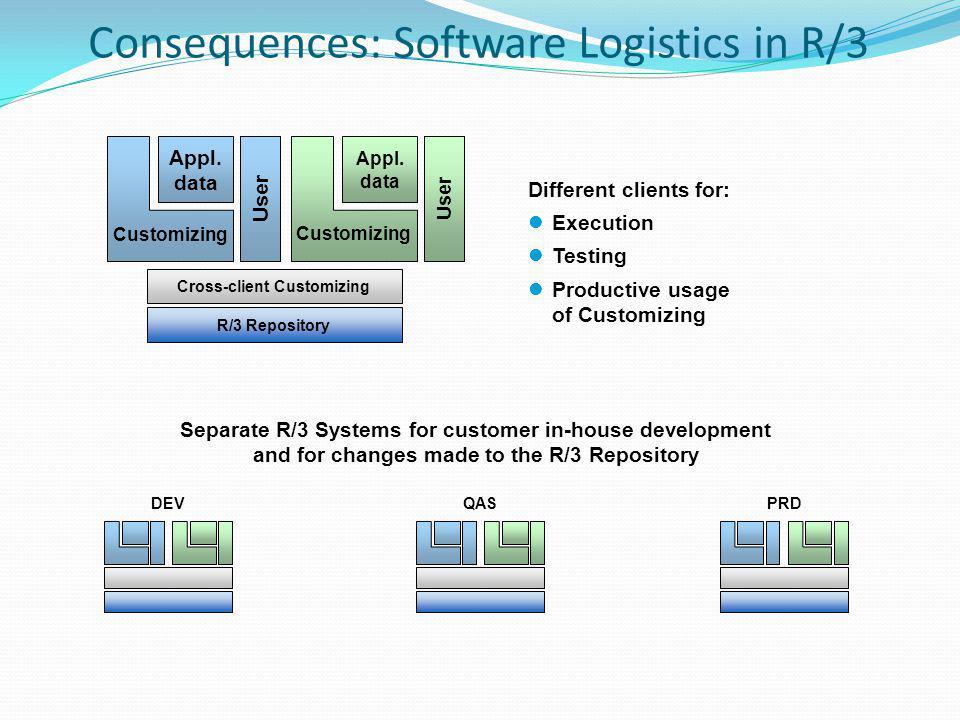 R/3 Repository Cross-client Customizing User Appl.
