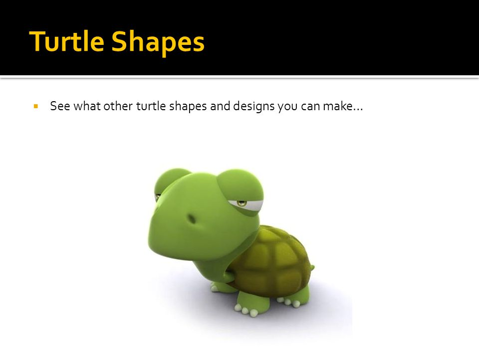 Turtle Shapes  See what other turtle shapes and designs you can make…