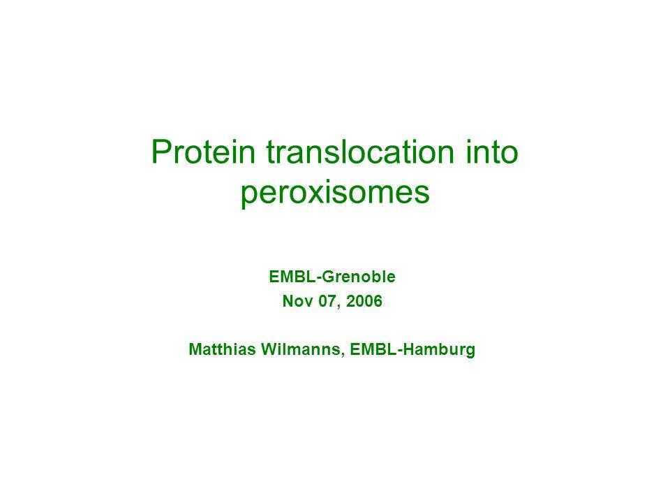 Protein translocation into peroxisomes EMBL-Grenoble Nov 07, 2006 Matthias Wilmanns, EMBL-Hamburg