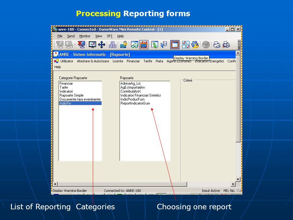 Processing Reporting forms Choosing one reportList of Reporting Categories