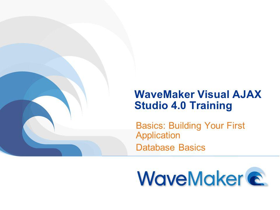 WaveMaker Visual AJAX Studio 4.0 Training Basics: Building Your First Application Database Basics