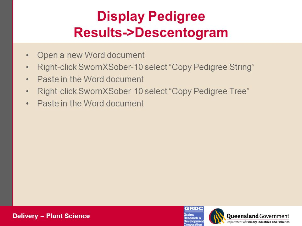 Delivery – Plant Science Display Pedigree Results->Descentogram Open a new Word document Right-click SwornXSober-10 select Copy Pedigree String Paste in the Word document Right-click SwornXSober-10 select Copy Pedigree Tree Paste in the Word document