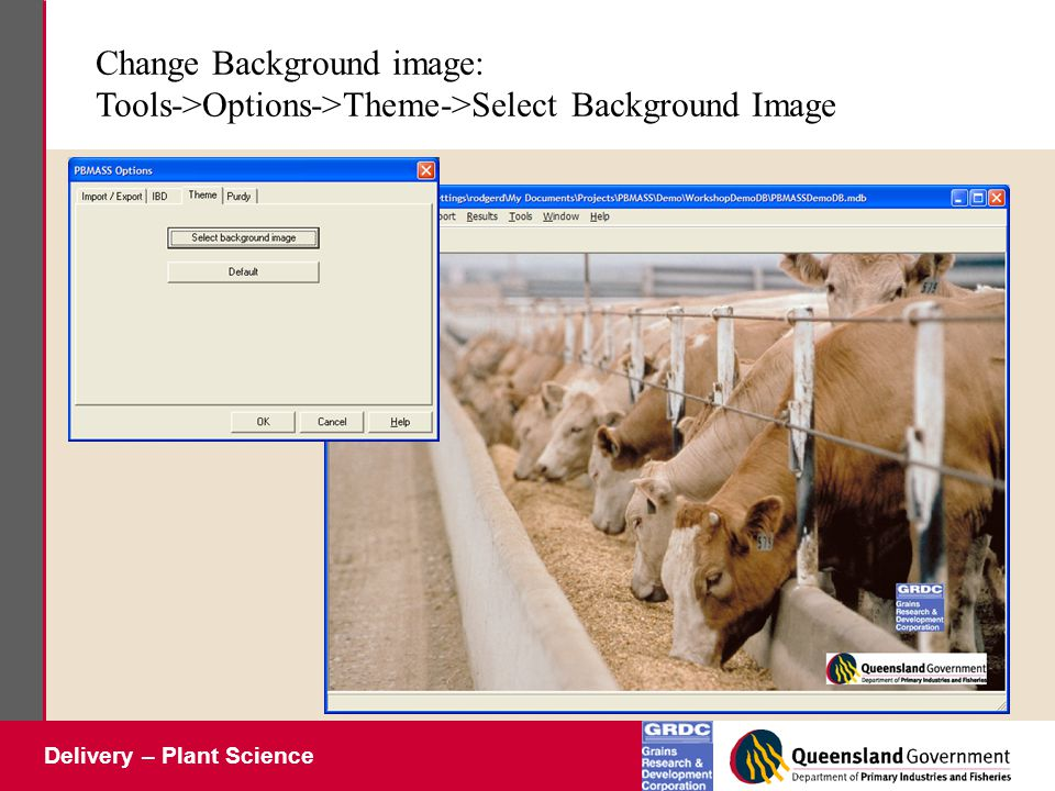 Delivery – Plant Science Change Background image: Tools->Options->Theme->Select Background Image