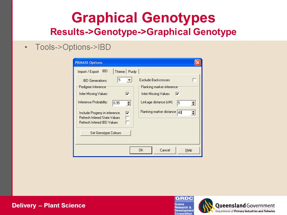 Delivery – Plant Science Graphical Genotypes Results->Genotype->Graphical Genotype Tools->Options->IBD