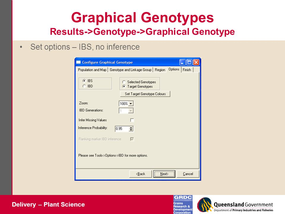 Delivery – Plant Science Graphical Genotypes Results->Genotype->Graphical Genotype Set options – IBS, no inference