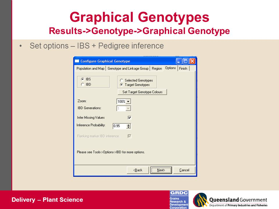Delivery – Plant Science Graphical Genotypes Results->Genotype->Graphical Genotype Set options – IBS + Pedigree inference