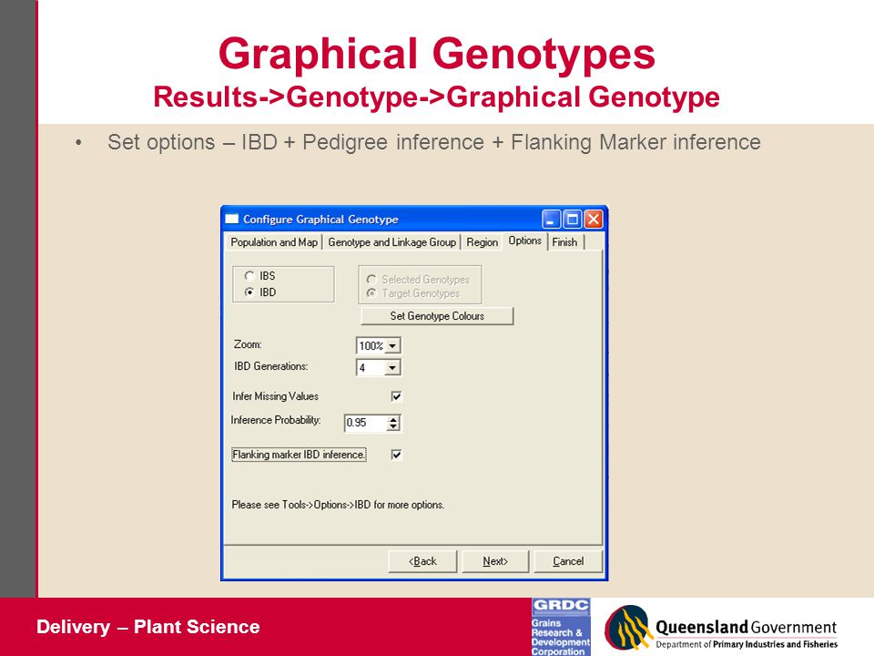 Delivery – Plant Science Graphical Genotypes Results->Genotype->Graphical Genotype Set options – IBD + Pedigree inference + Flanking Marker inference