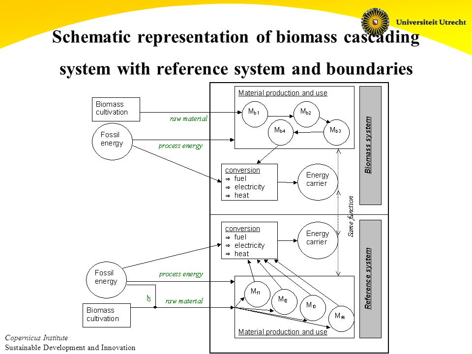 Copernicus Institute Sustainable Development and Innovation Schematic representation of biomass cascading system with reference system and boundaries