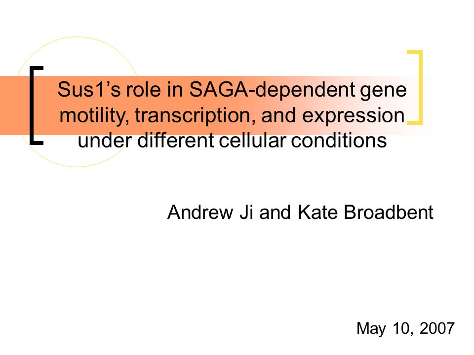 Andrew Ji and Kate Broadbent May 10, 2007 Sus1's role in SAGA-dependent gene motility, transcription, and expression under different cellular conditions