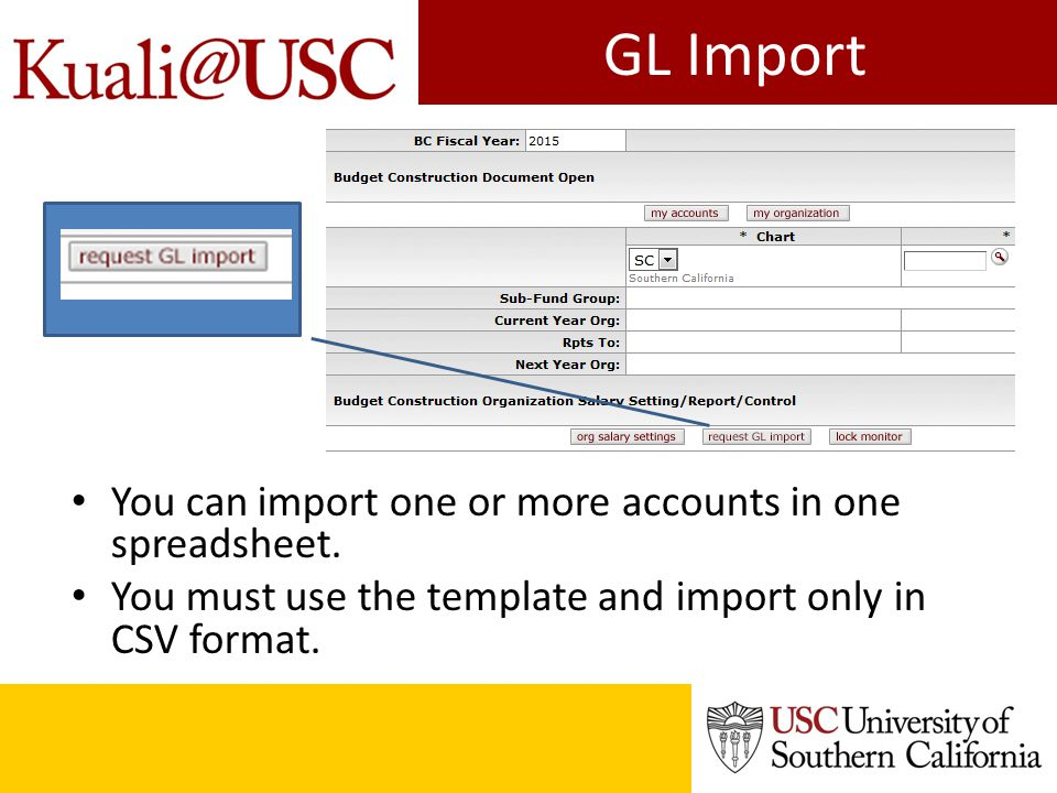GL Import template Use SC No Dashes in the Account # Must be 10 digits Blank column Object Code Must be 5 digits, format cell to 00000 Blank column Do not use $ or, $1,123.00 should read 1123.00 Must be between -999999900 and 999999900 You can prepare your budget for import using this template, saving it as a CSV before upload.