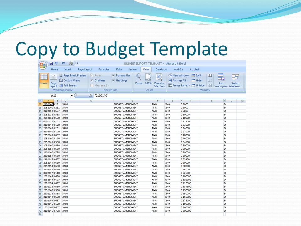 Copy to Budget Template